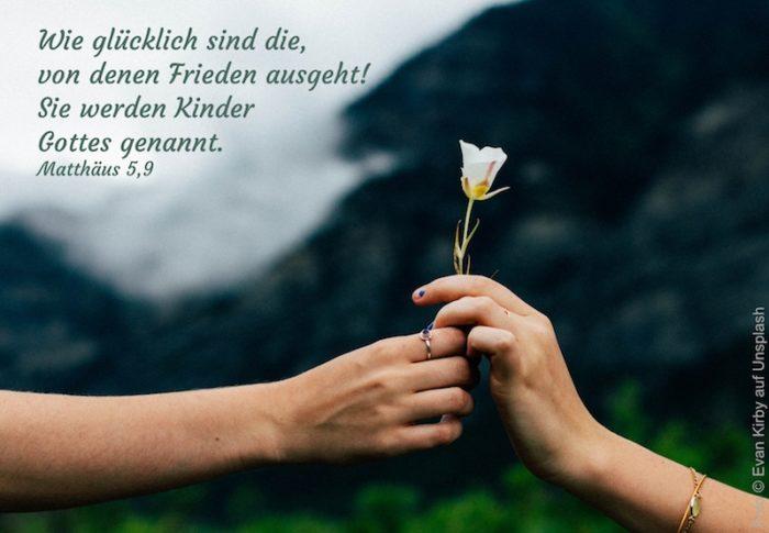 eine Hand überreicht eine Rose an eine andere Hand
