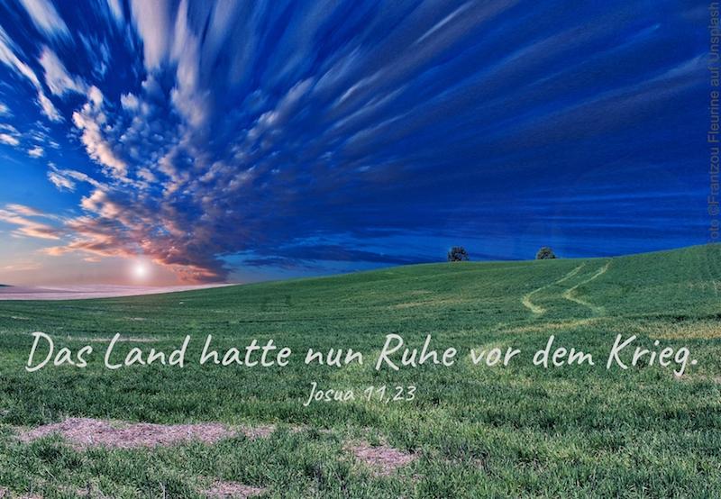 Feld unter blauem Himmel