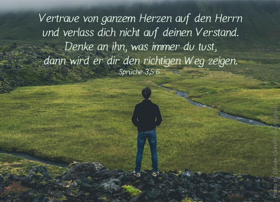 Mann steht auf Mauer und blickt über grünes Land