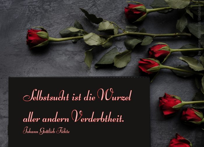 Rote Rosen auf schwarzem Untergrund