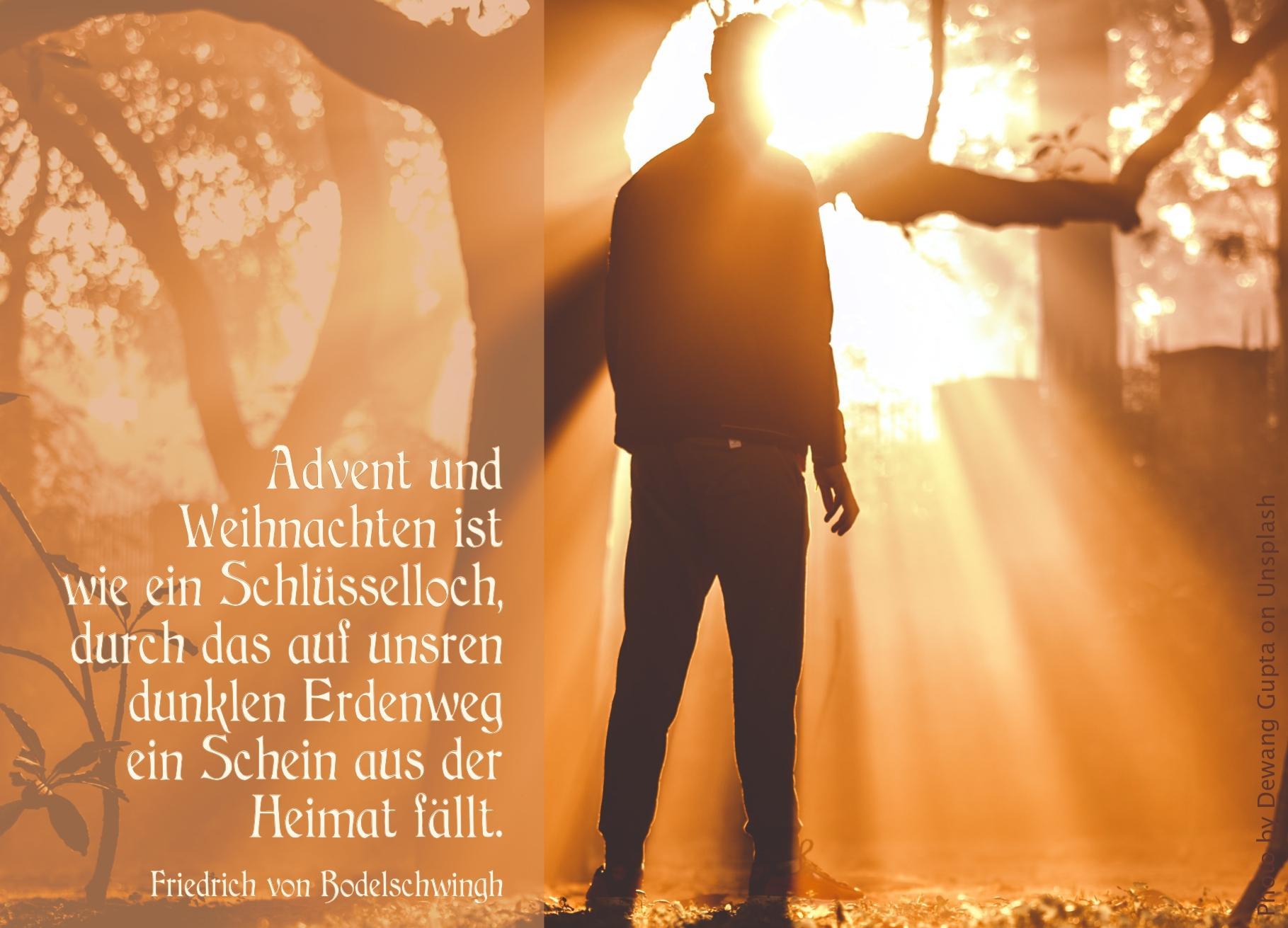 """alt=""""mann_steht_im_zwielicht_eines_sonnenstrahl_der_durch_die_baeume_bricht_erwartet_bibelhoerbuch_habakkuk"""""""