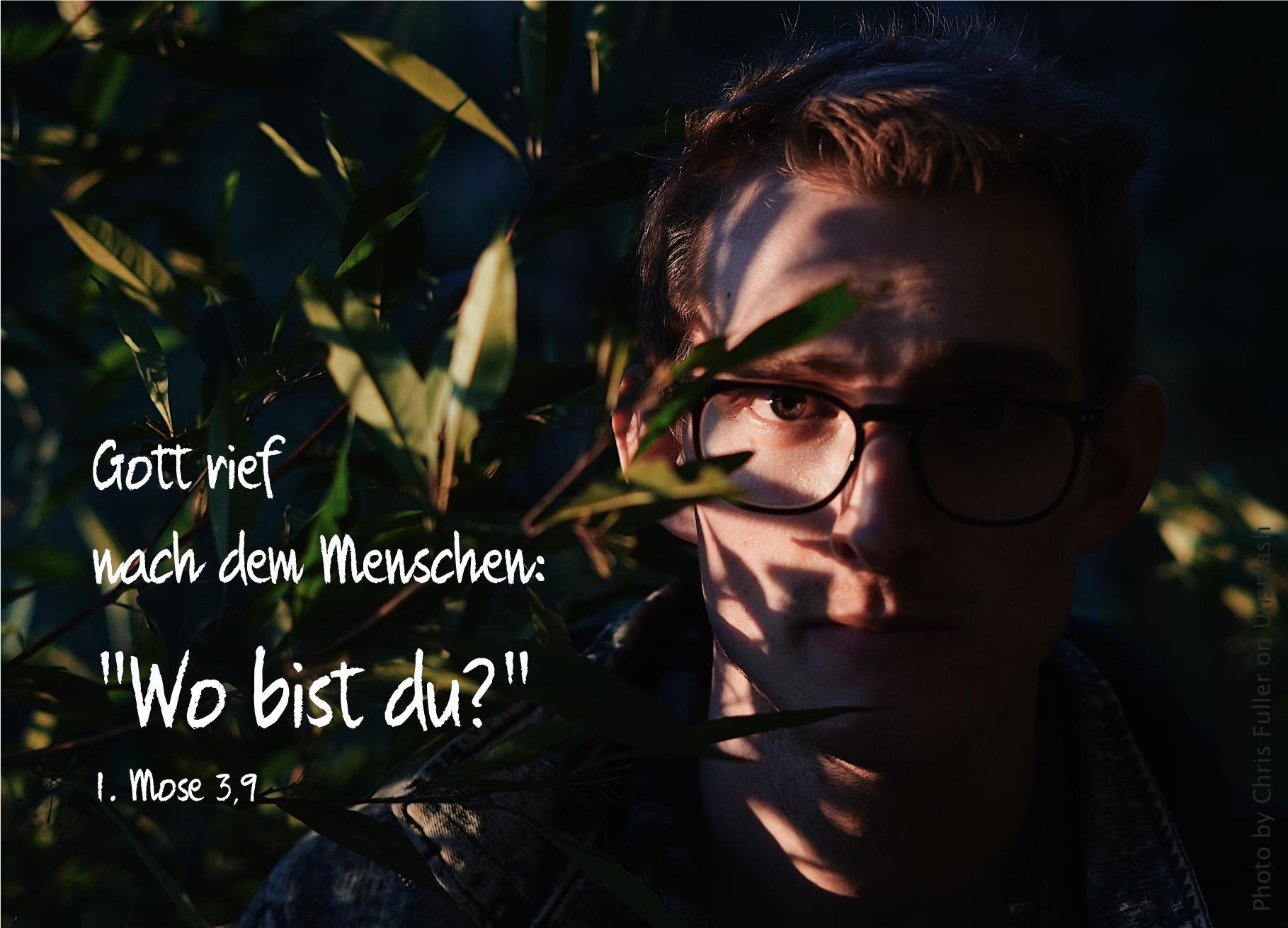 """alt=""""gesicht_von_jungem_mann_hinter_blaettern_erwartet_bibelhoerbuch_Kain_und_Abel"""""""