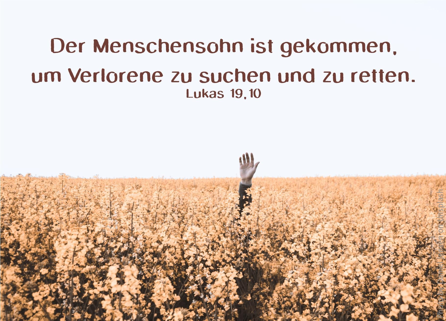 """alt=""""hand_wird_aus_einem_feld_hochgestreckt_erwartet_bibelhoerbuch_david_und_goliath"""""""