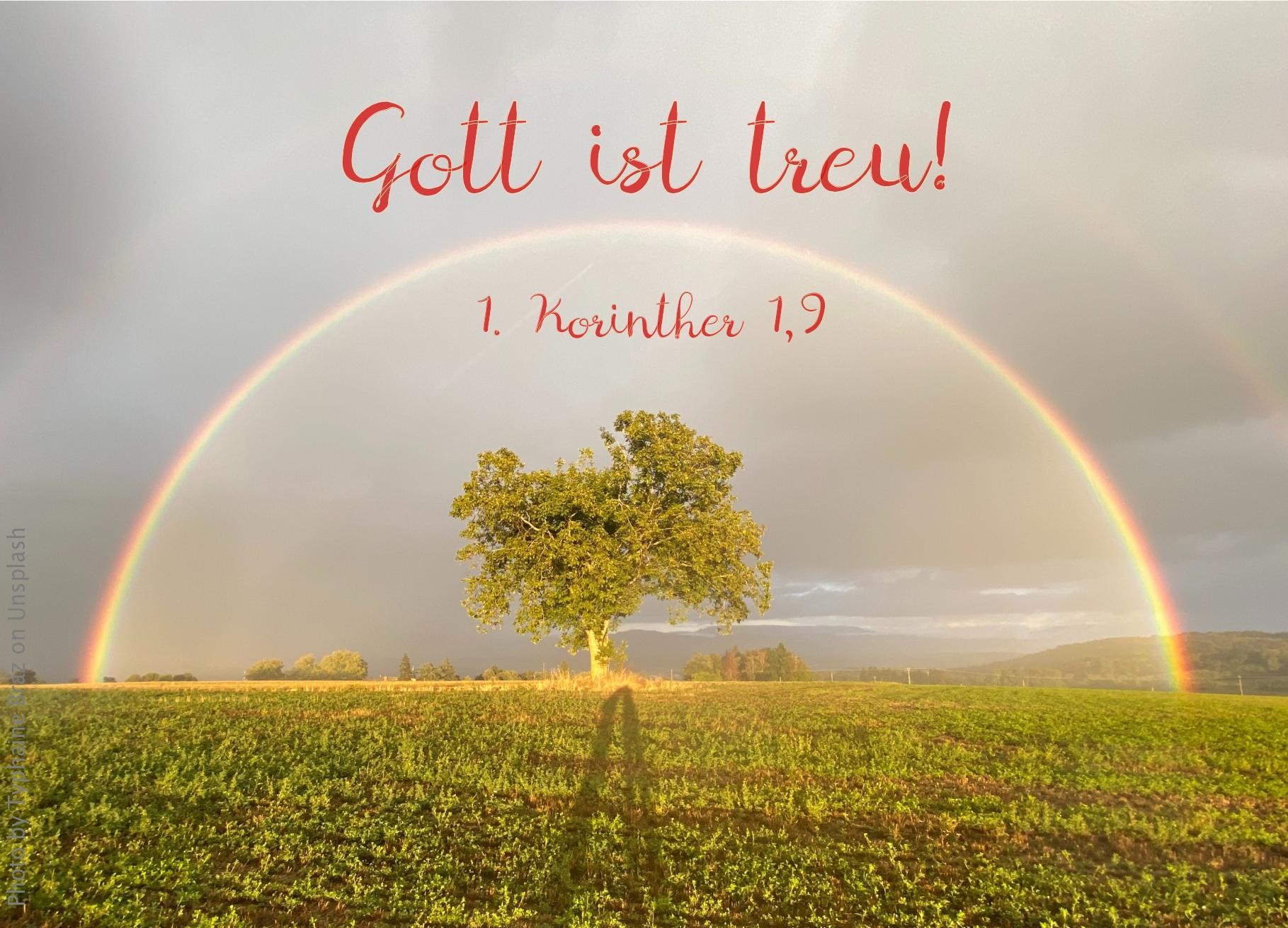 """alt=""""Regenbogen_ueber_Baum_auf_Feld_erwartet_bibelhoerbuch_Spaltungen"""""""