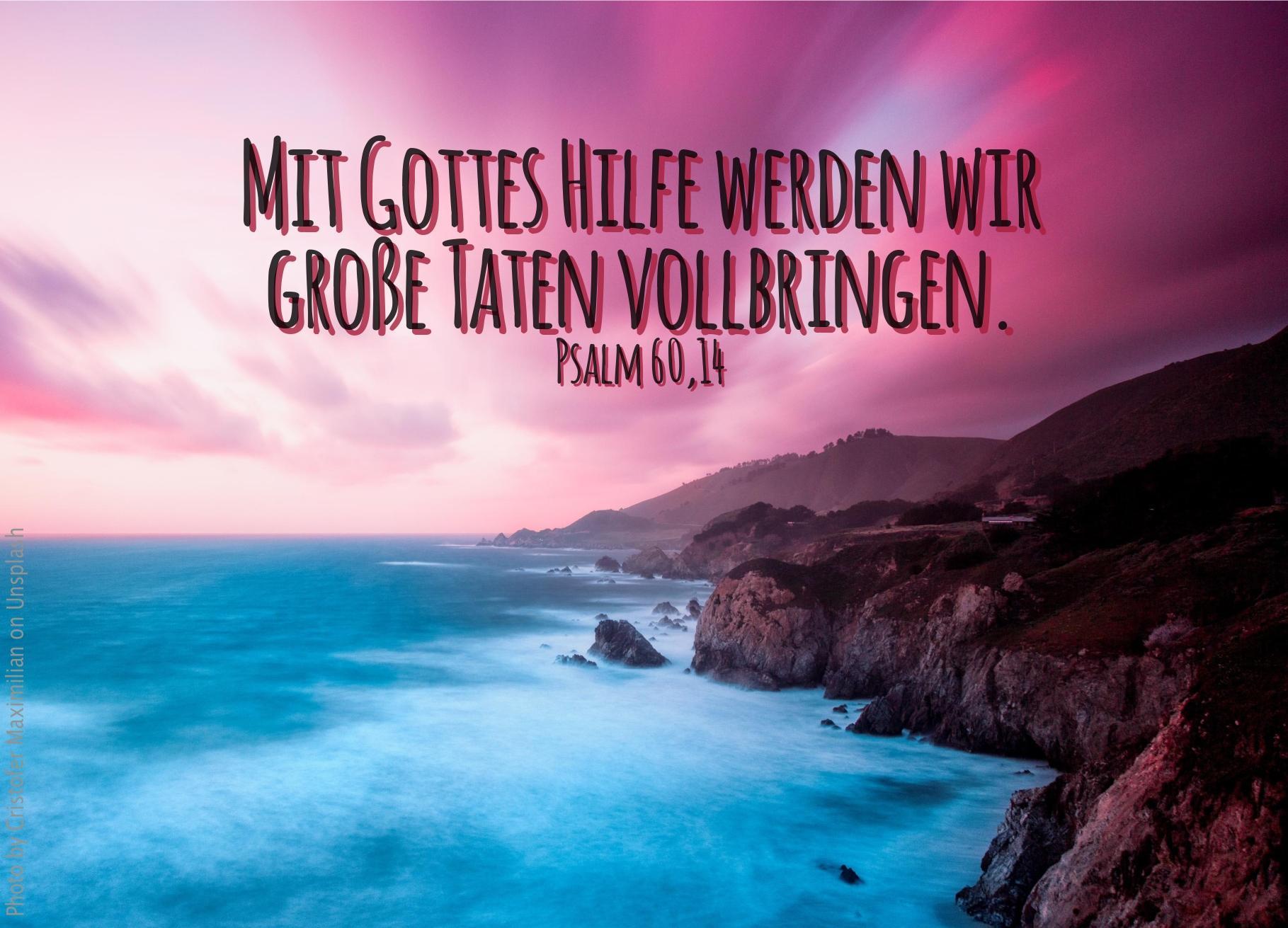 """alt=""""steilkueste_erwartet_bibelhoerbuch_tempel_fuer_den_herrn"""""""
