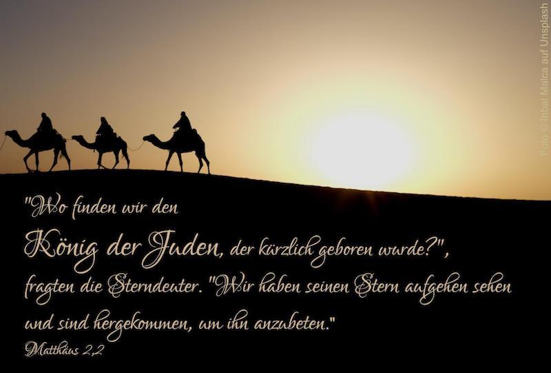 drei Kamele in der Wüste vor gelber Sonne