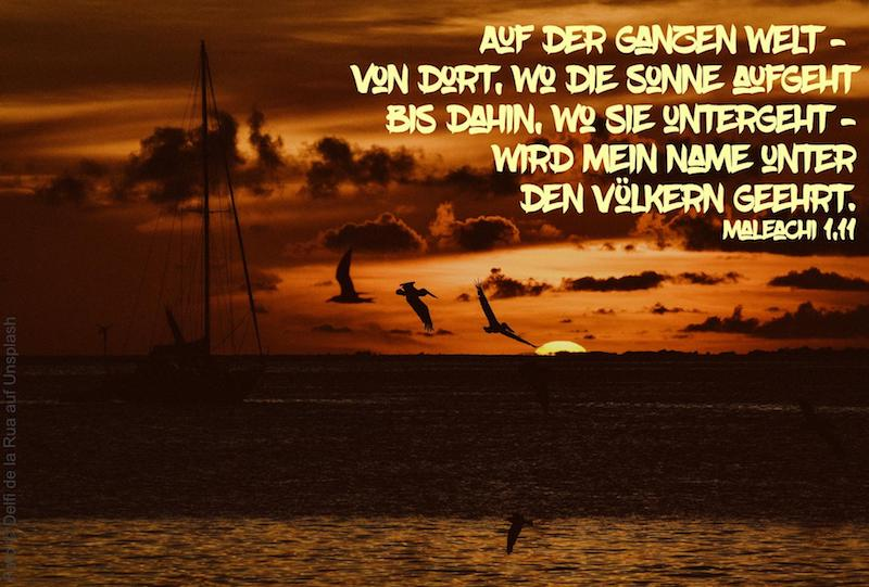 Segelboot und Vögel vor rotem Sonnenaufgang