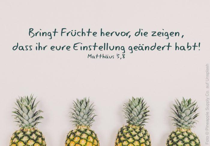 4 Ananas mit Blättern