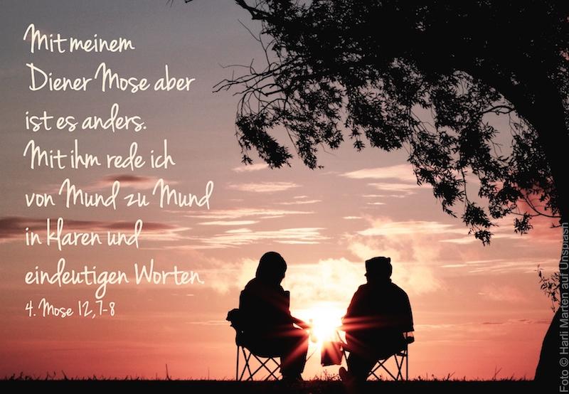 zwei Freunde sitzen im Abendrot unterm Baum