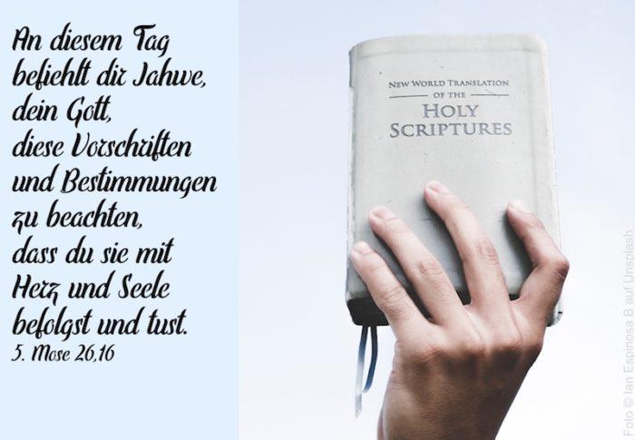 Hand hält englische Bibel hoch