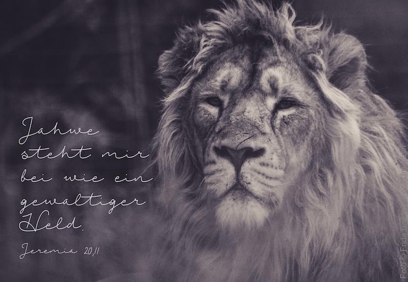 Löwe mit Mähne
