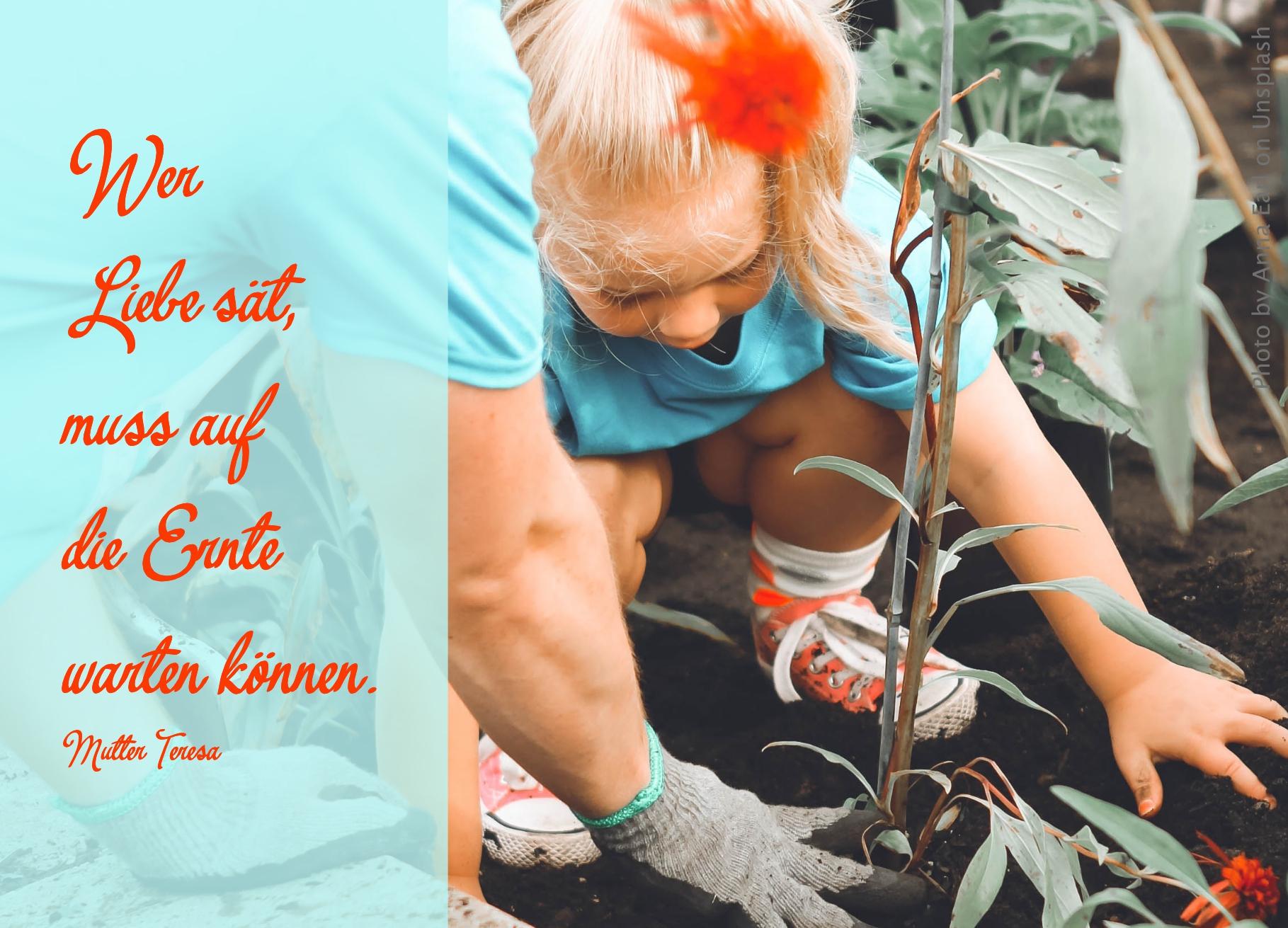 Mädchen pflanzt etwas