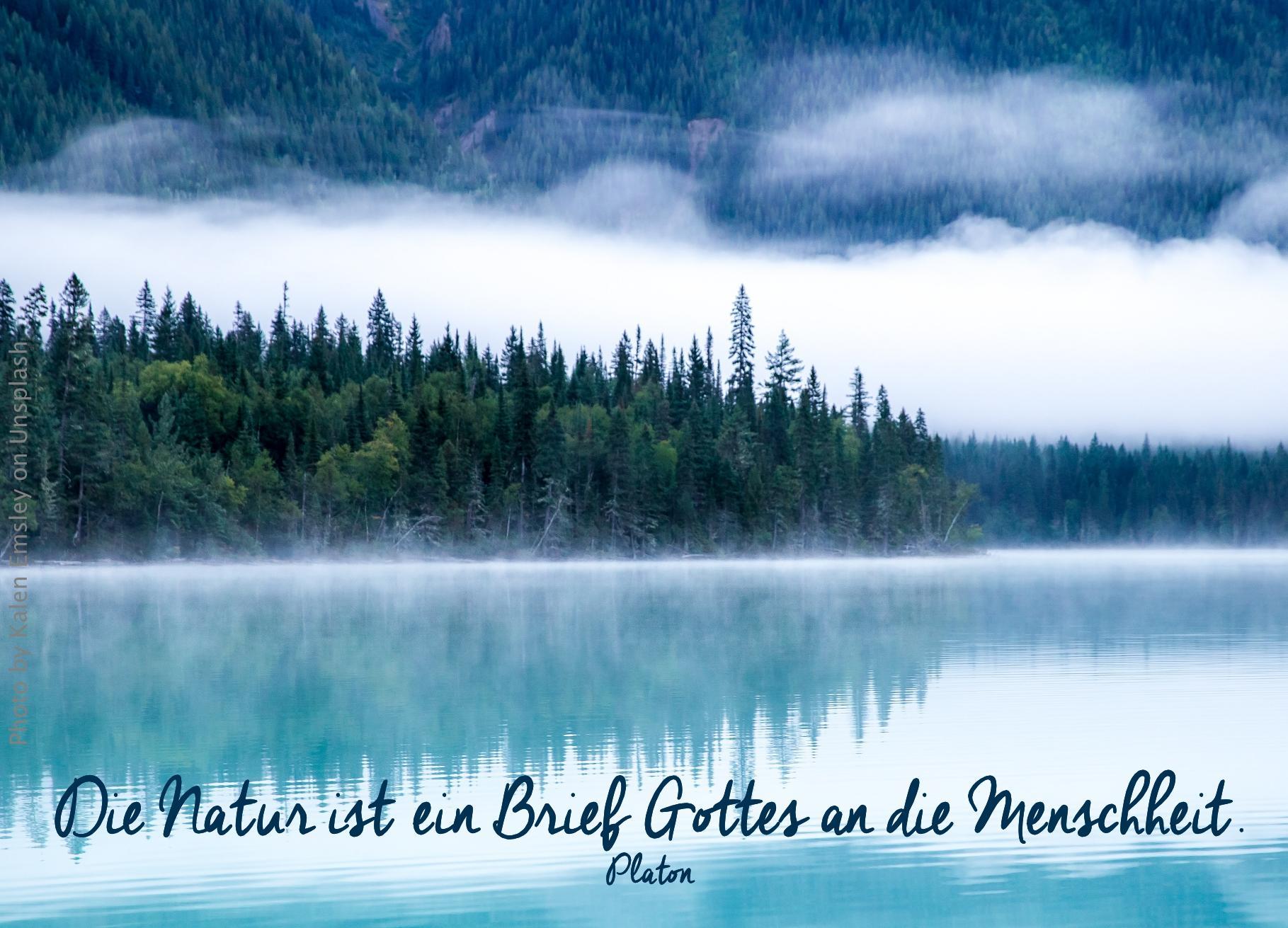 See vor bewaldeten Bergen im Nebel