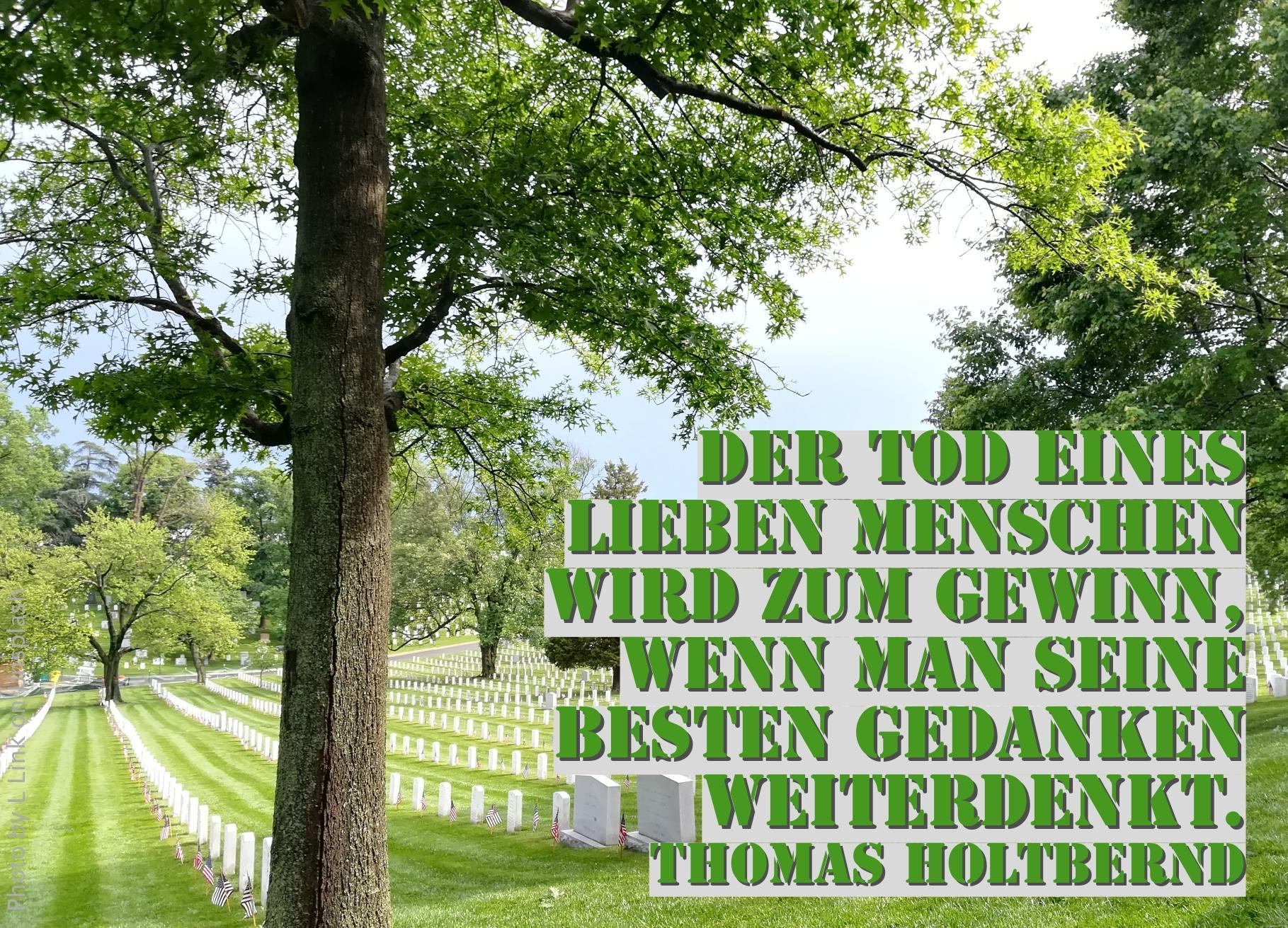 Friedhof unter grünen Bäumen