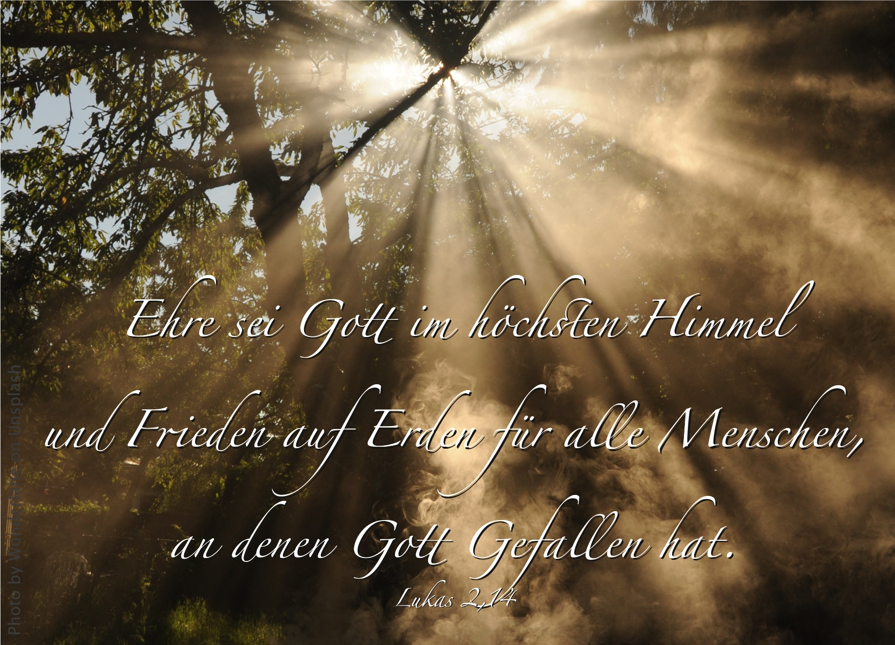 "alt=""lichtstrahl_faellt_durch_die_baeume_erwartet_bibelhoerbuch_hirten_und_engel"""