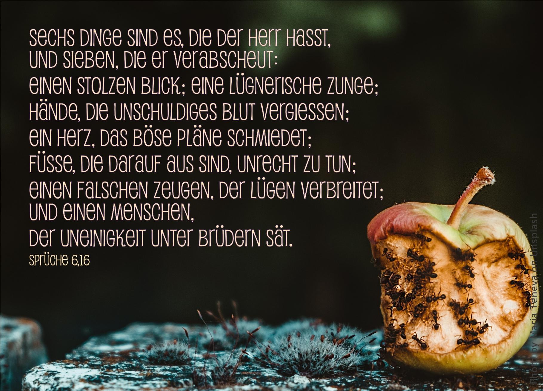 """alt=""""angebissener_alter_apfel_mit_ameisen_erwartet_bibelhoerbuch_jesu_kreuzigung"""""""