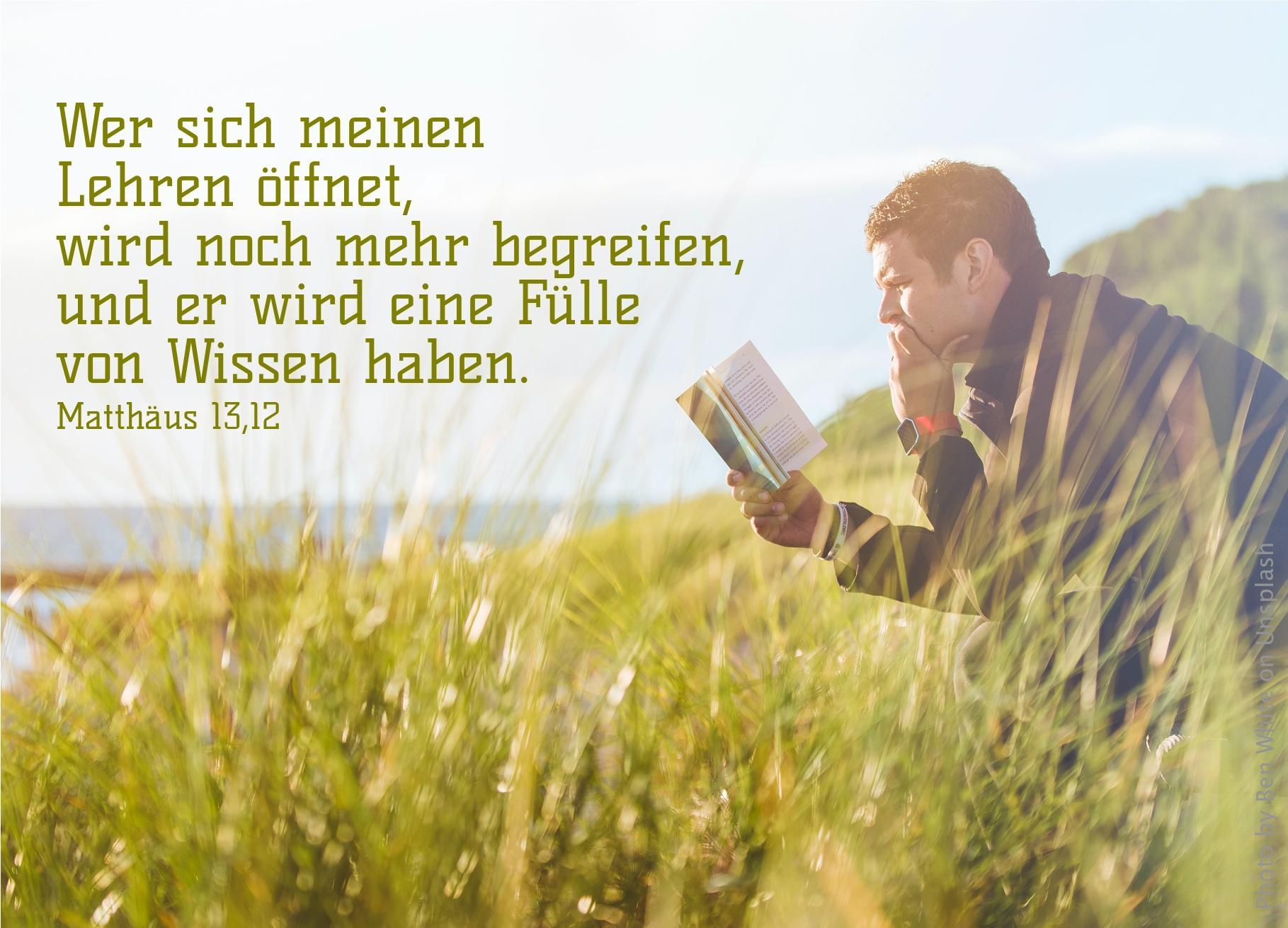 """alt=""""mann_sitzt_in_wiese_und_liest_erwartet_bibelhoerbuch_nadab_und_abihu"""""""