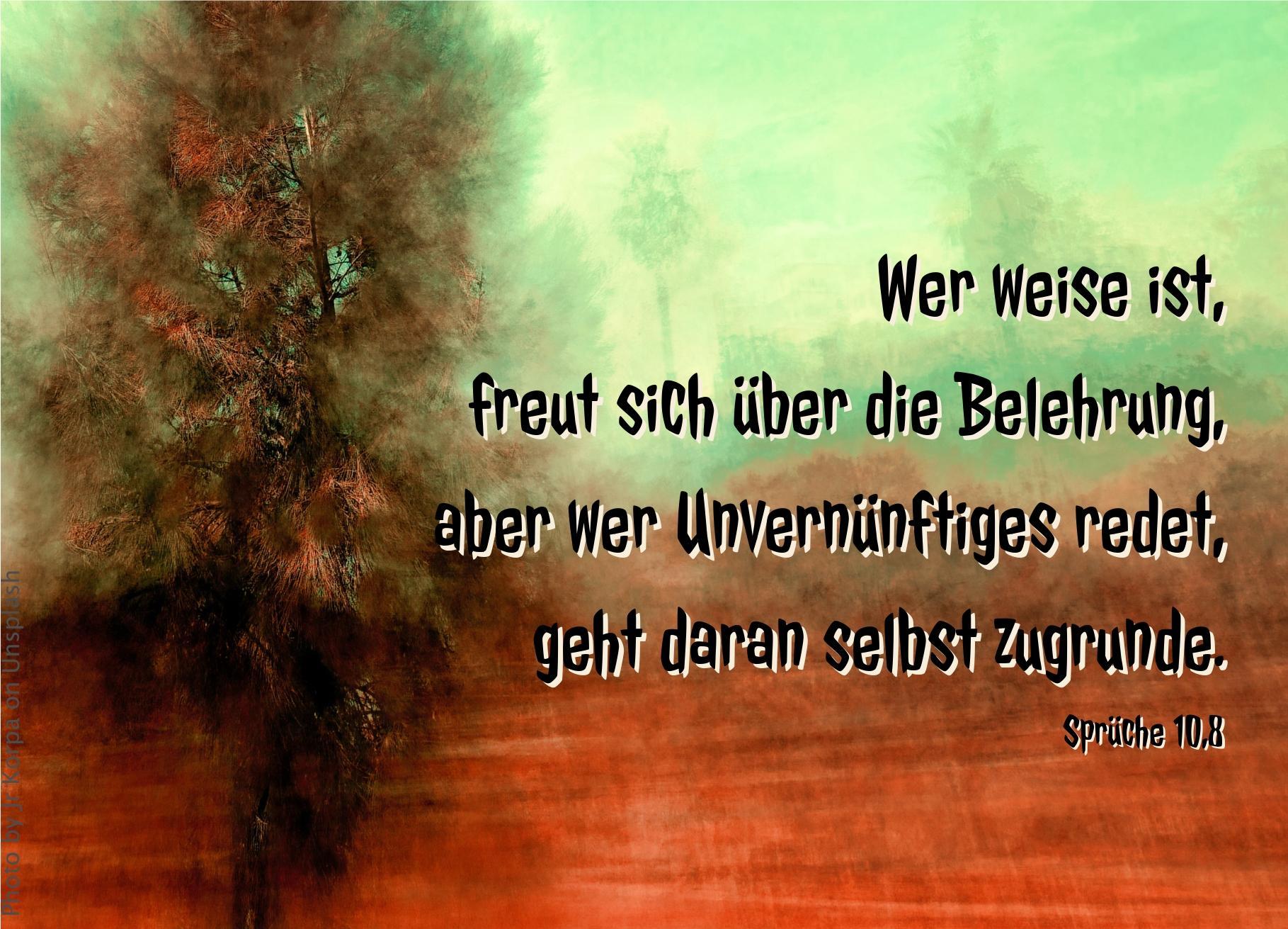 """alt=""""gruen_roter_hintergrund_mit_braunem_baum_erwartet_bibelhoerbuch_gleichnisse"""""""
