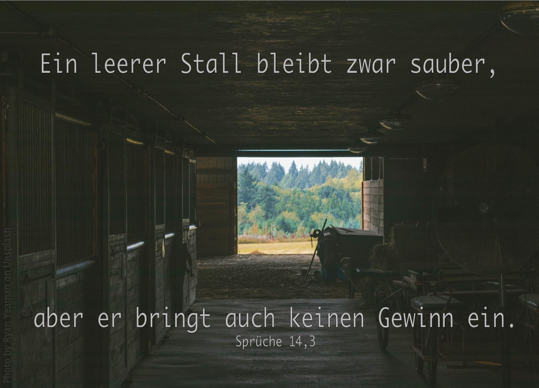 """alt=""""blick_aus_dunklem_stall_durch_geoeffnete_tuer_erwartet_bibelhoerbuch_debora_wird_richterin"""""""