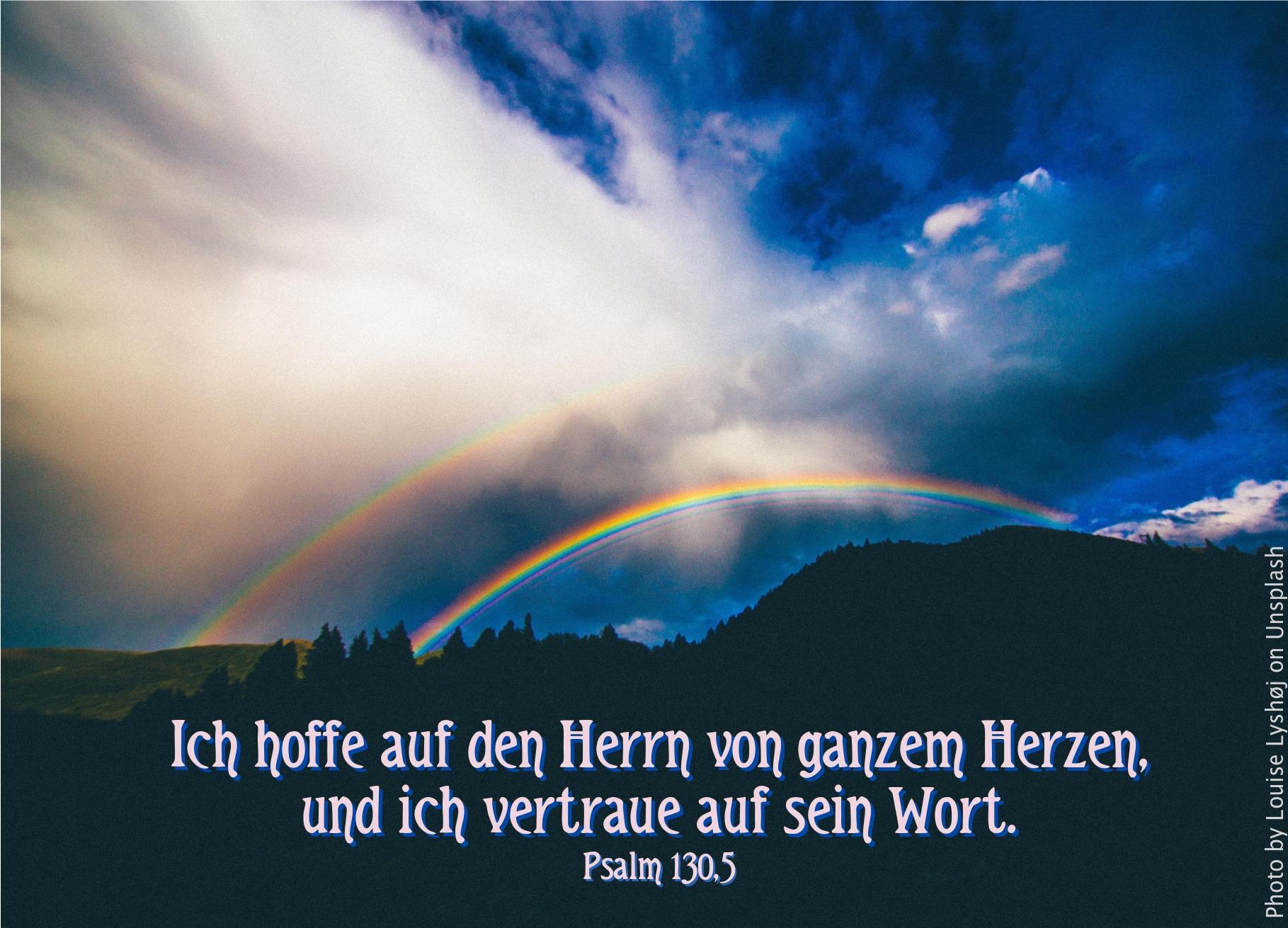 """alt""""Regenbogen_ueber_Wald_vor_weisser_Wolke_erwartet_bibelhoerbuch_Missionsreise"""""""
