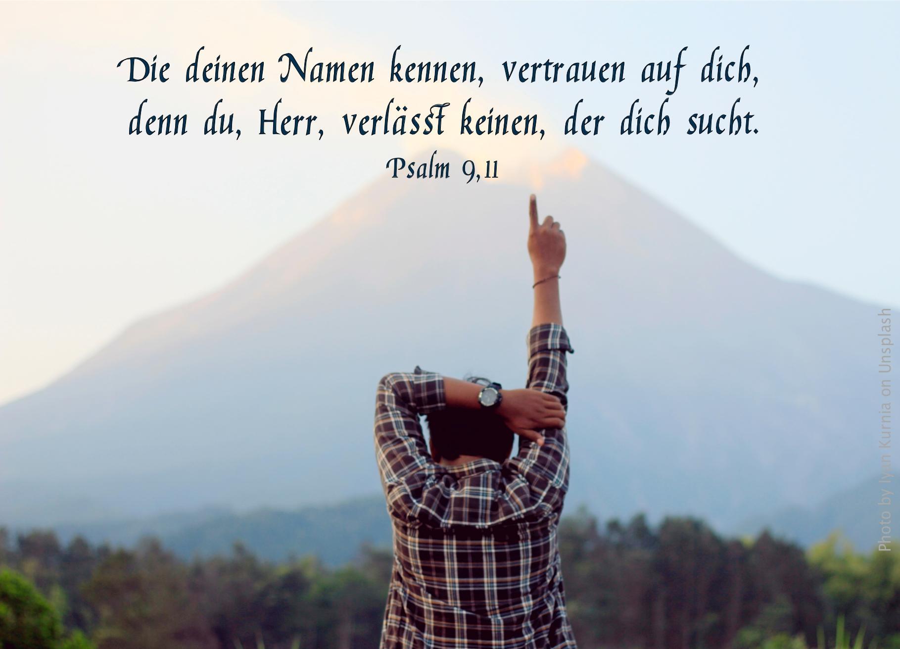 """alt=""""mann_vor_bergpanorama_zeigt_nach_oben_erwartet_bibelhoerbuch_david_erobert_jerusalem"""""""