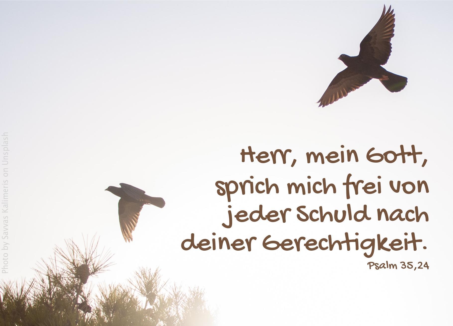 """alt=""""zwei_voegel_am_himme_erwartet_bibelhoerbuch_ester_wird_koenigin"""""""