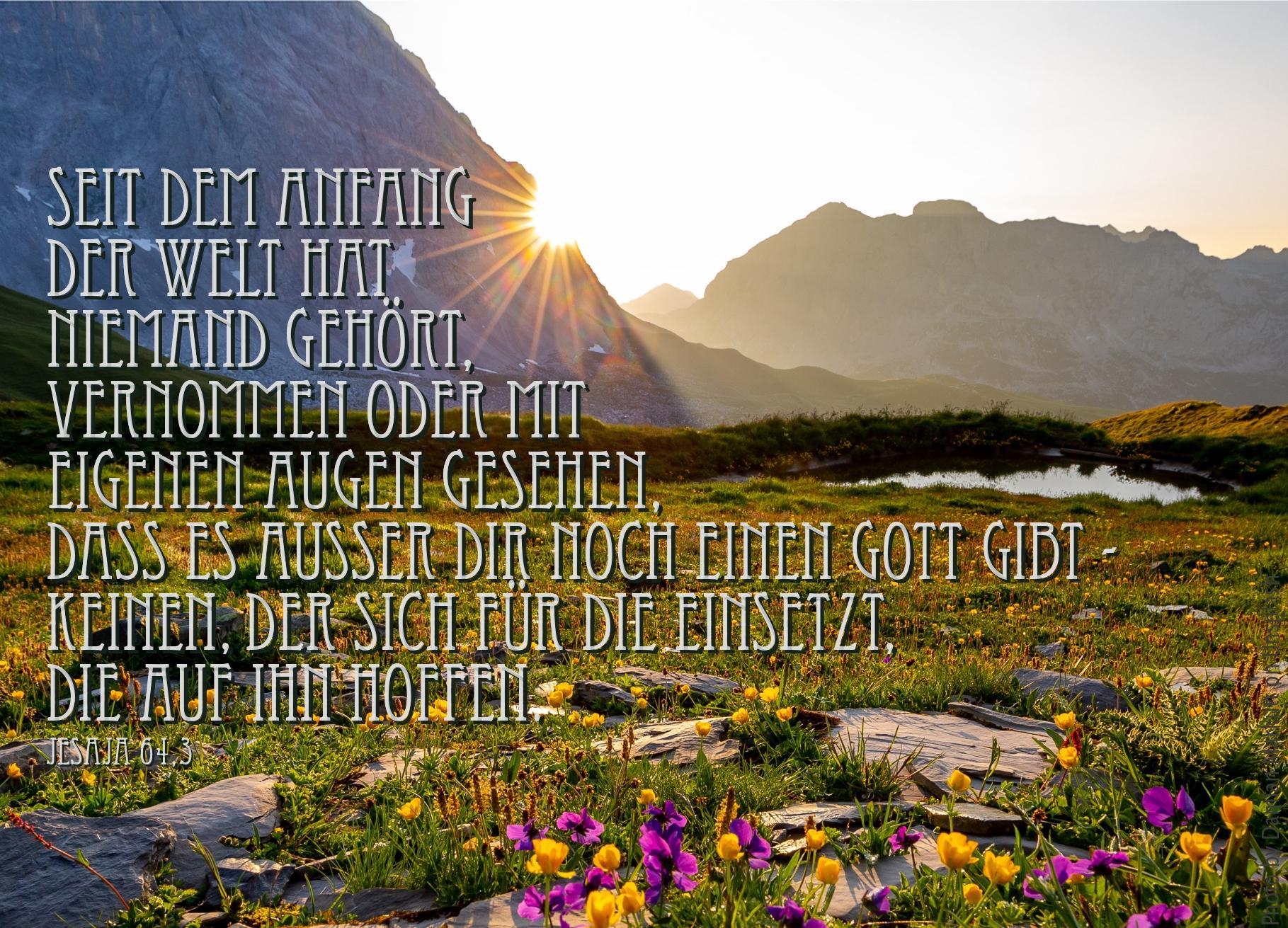 """alt=""""sonne_auf_bluehender_alm_erwartet_bibelhoerbuch_ermutigung_zum_gebet"""""""