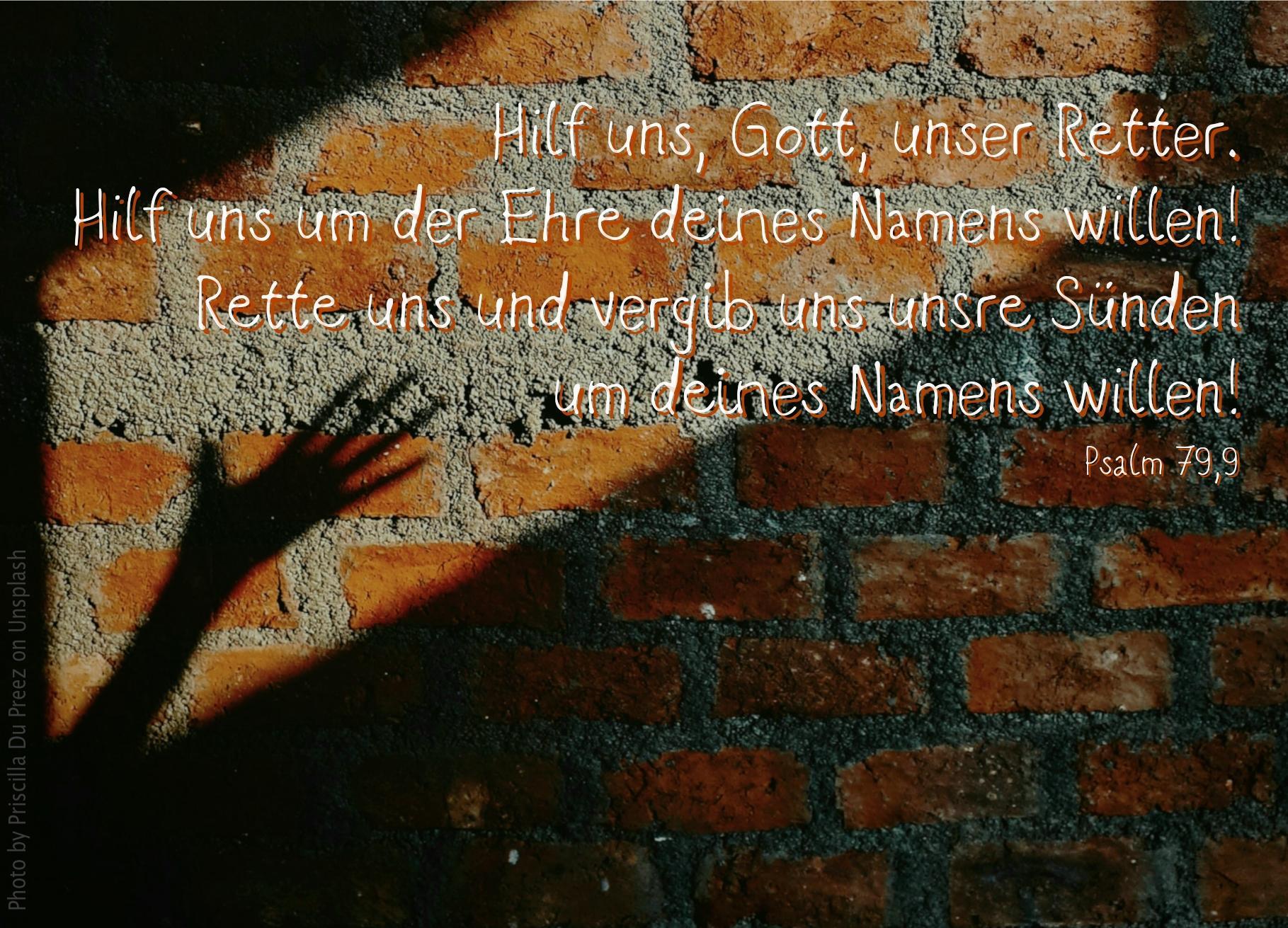 """alt=""""hand_als_schatten_an_einer_steinmauer_erwartet_bibelhoerbuch_warnung_vor_irrlehrern"""""""